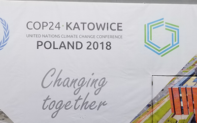 The state of play after COP24 and looking ahead to 2019